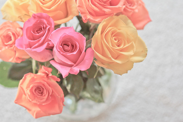 Beautiful Russian ladies adore romantic flowers